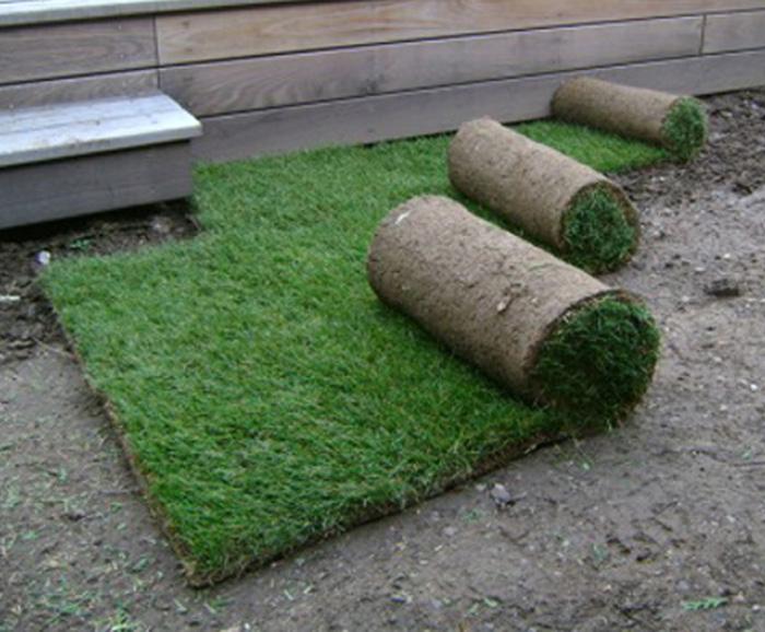 gazon de placage plateforme compostage et produits pour jardins sprinar compotech 67. Black Bedroom Furniture Sets. Home Design Ideas